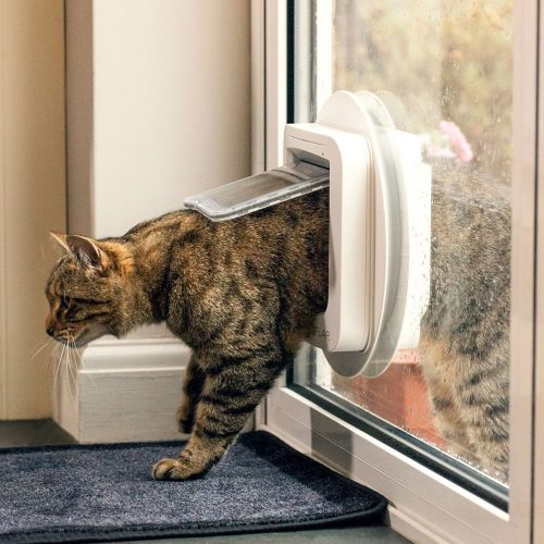Make Life Easier with a Cat Door