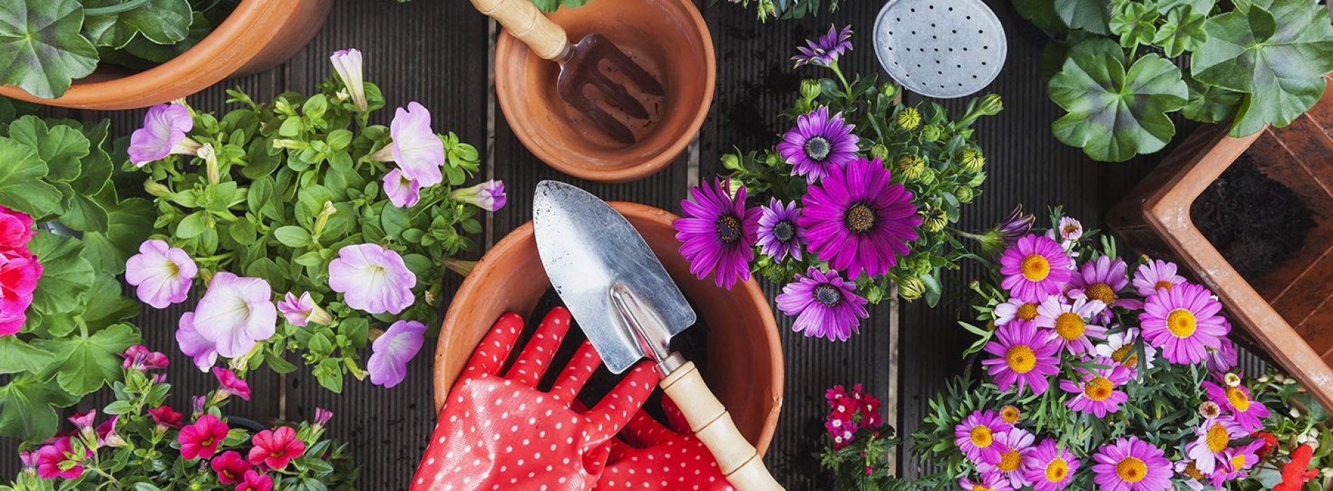 Keep maintaining your garden ornaments time to time for last long