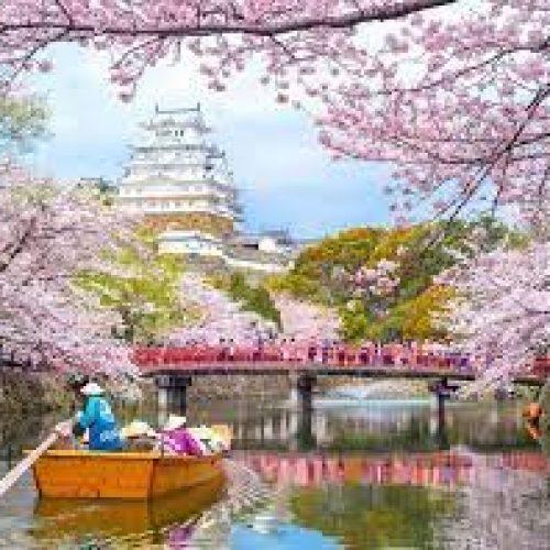 Japan Family Tours – Places To Take A Trip To